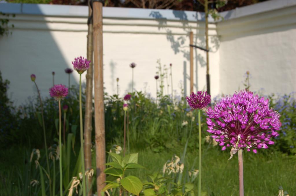 Trädgårdsdesign 102